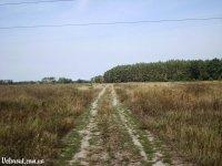 Веломаршрут (velorout). Киевщина. Лесной маршрут (Художественная часть)